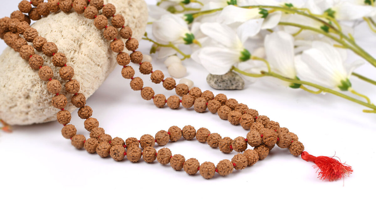 Importance Of Rudraksha And Rules Of Wearing Rudraksha Beads